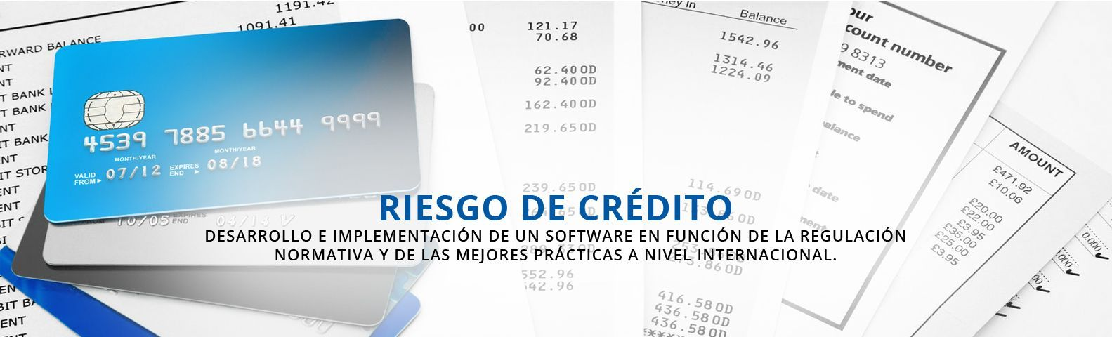 BNR RIESGO DE CREDITO 01